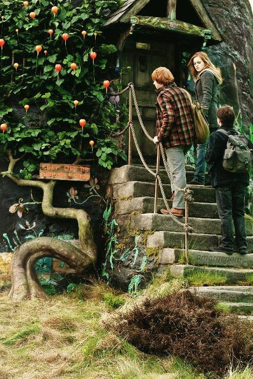 potter, granger, hermione and harry