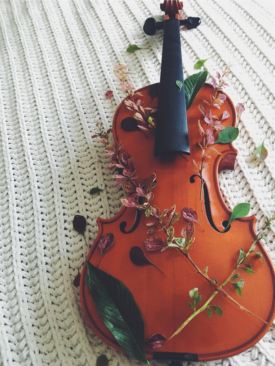 music, violin and orchestra