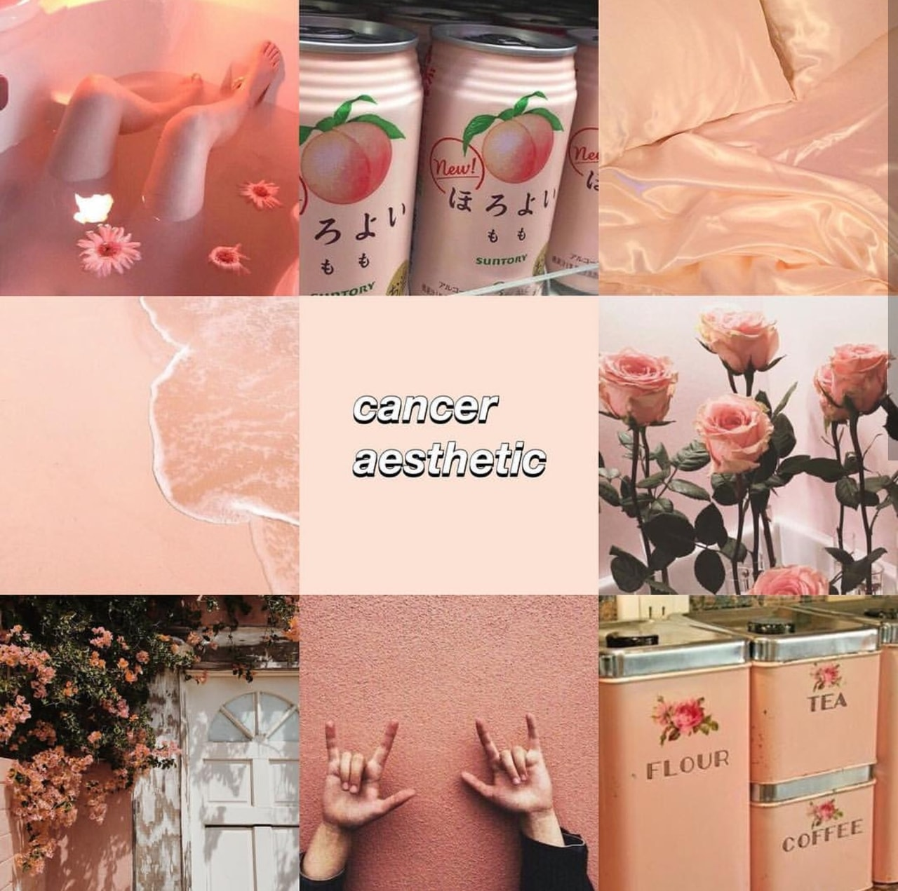 Cancer Aesthetic Zodiac Sign And June Image 6081889 On Favim Com