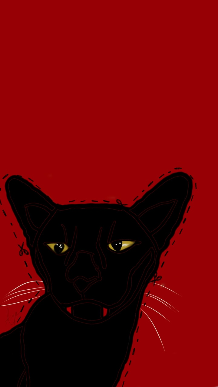 Cat Grunge Red And Vampire Image 6133121 On Favim Com