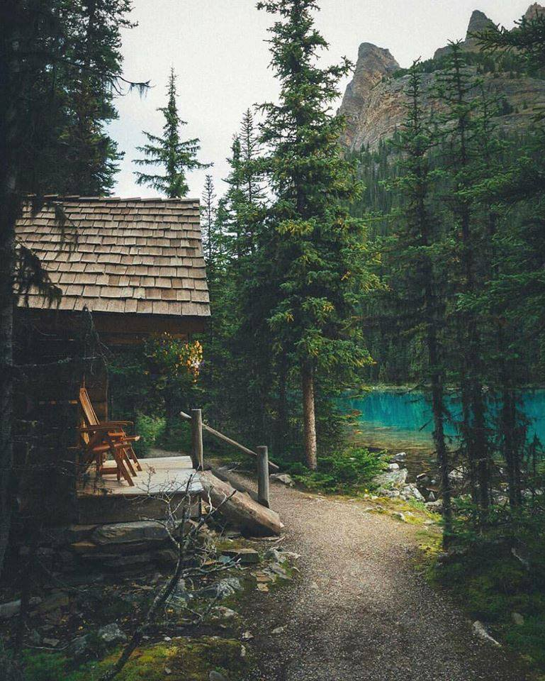 cabin, forest, mountains and mountain living