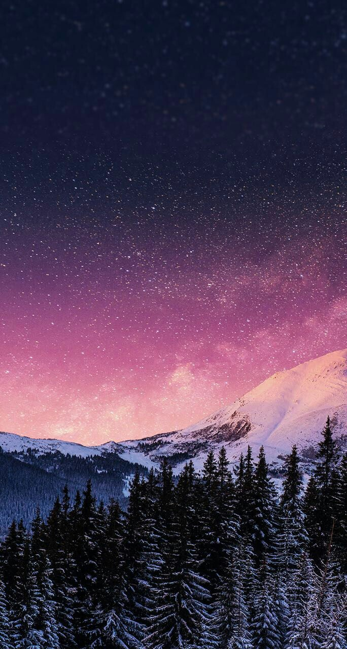 whimsical, night and snow