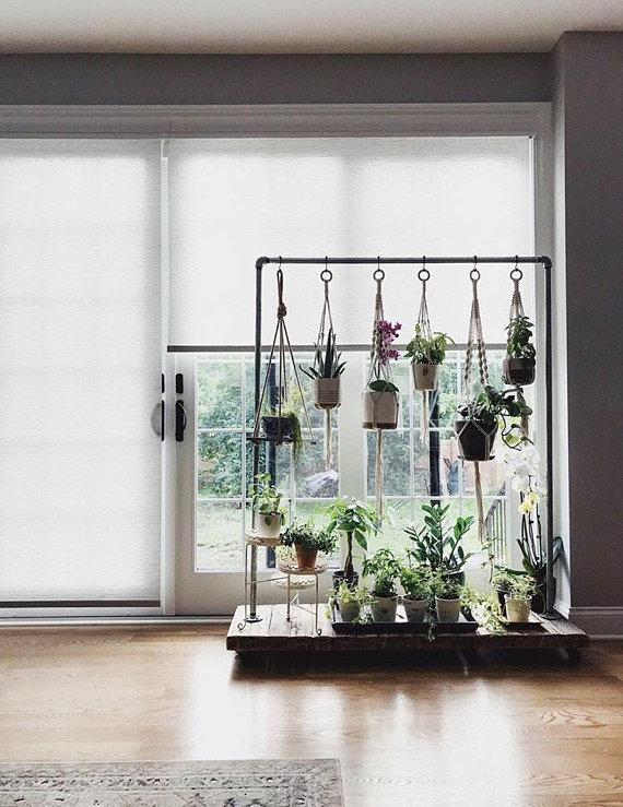 Knotted Plant Hanger Indoor Nature