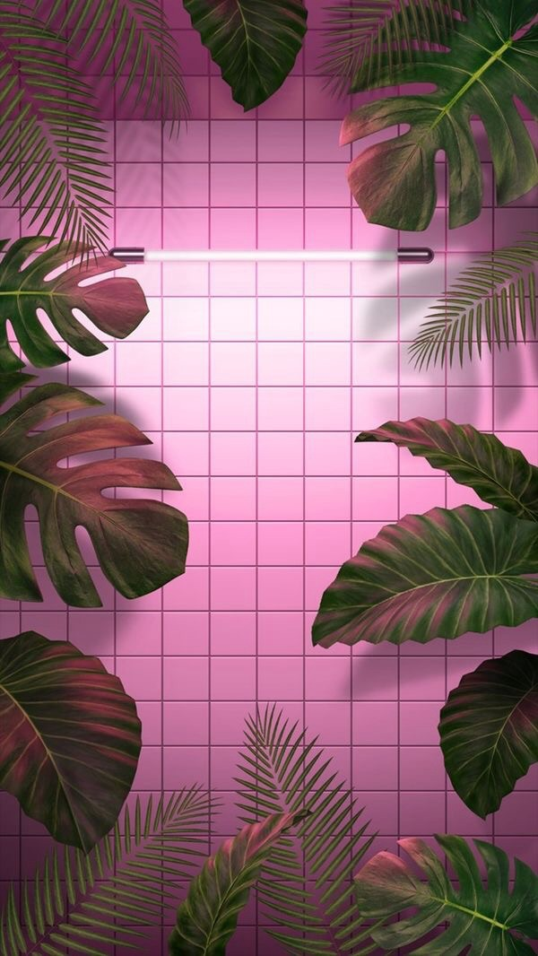 Pretty Aesthetic Background And Leafs Image 6129658 On Favim Com