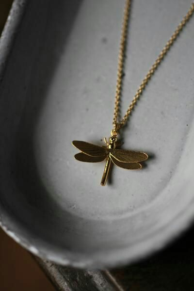 jewerly, dragonfly, nackelace and poetry