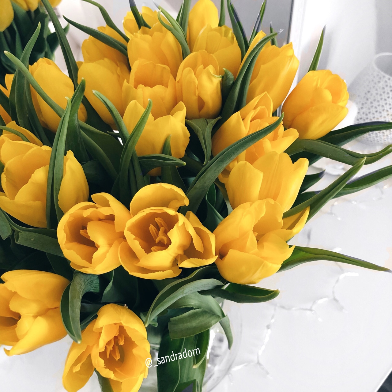 flower, inspiration, yellow flowers and flowers