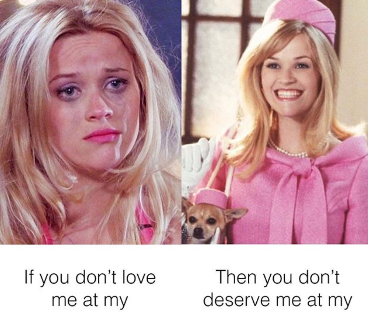 movies, relatable, reese witherspoon and legally blonde