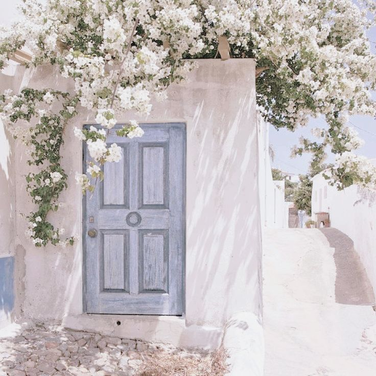 greece, flowers, ocean and white