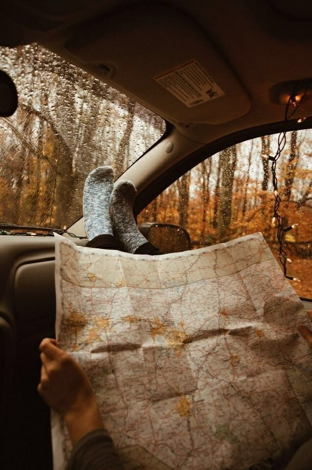 autumn, map and forest