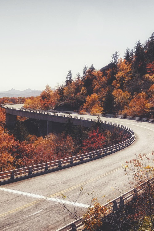 road, autumn and september