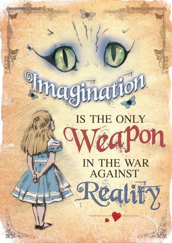 the cat, weapon and reality