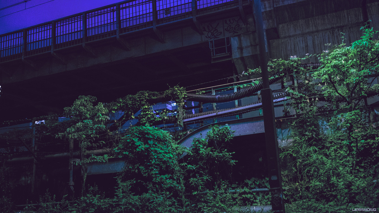 overgrowth, tokyo and japan