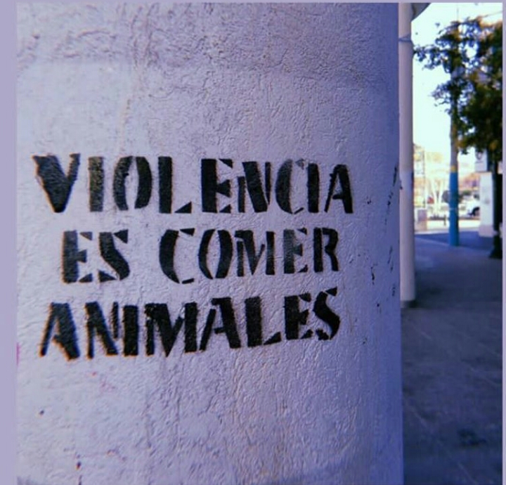 veganism, quotes and frases