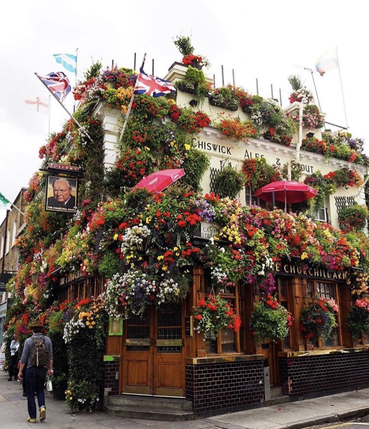 flowers, london and cool