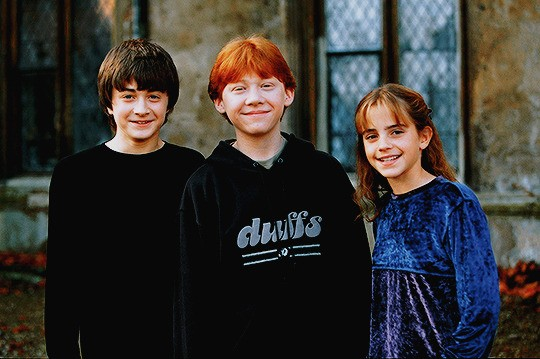 harry potter, daniel radcliffe and hermione