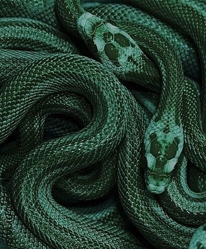 aesthetic, siltheren and green