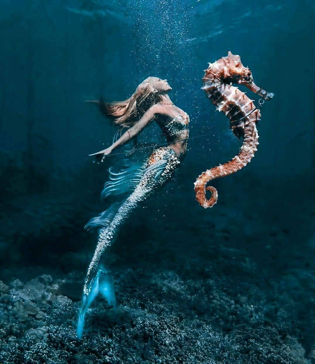 mermaids, fantasy, beautiful and mermaid