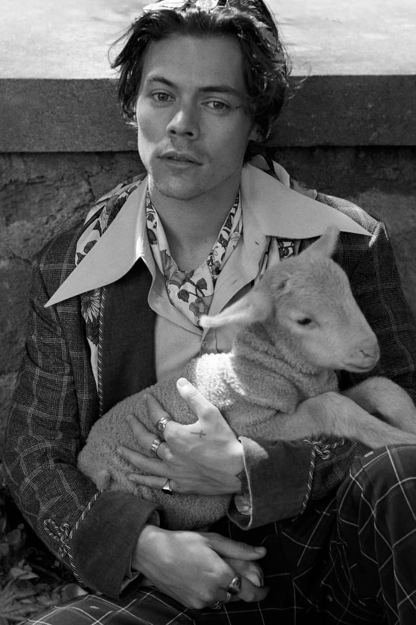 gucci cruise 19, gucci cruise 2019, cute and harry styles