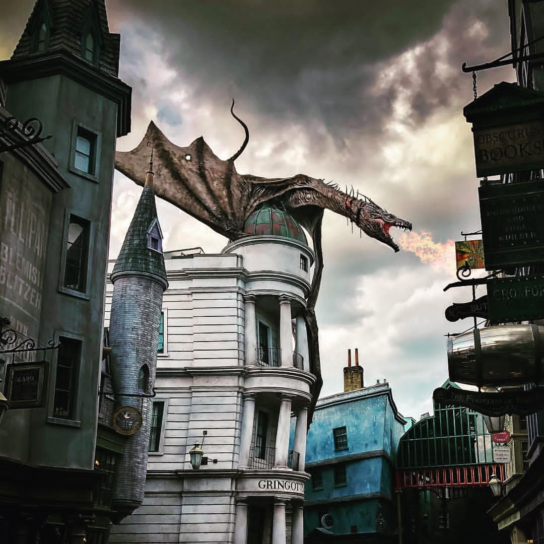 wizarding world, gringotts and dragon