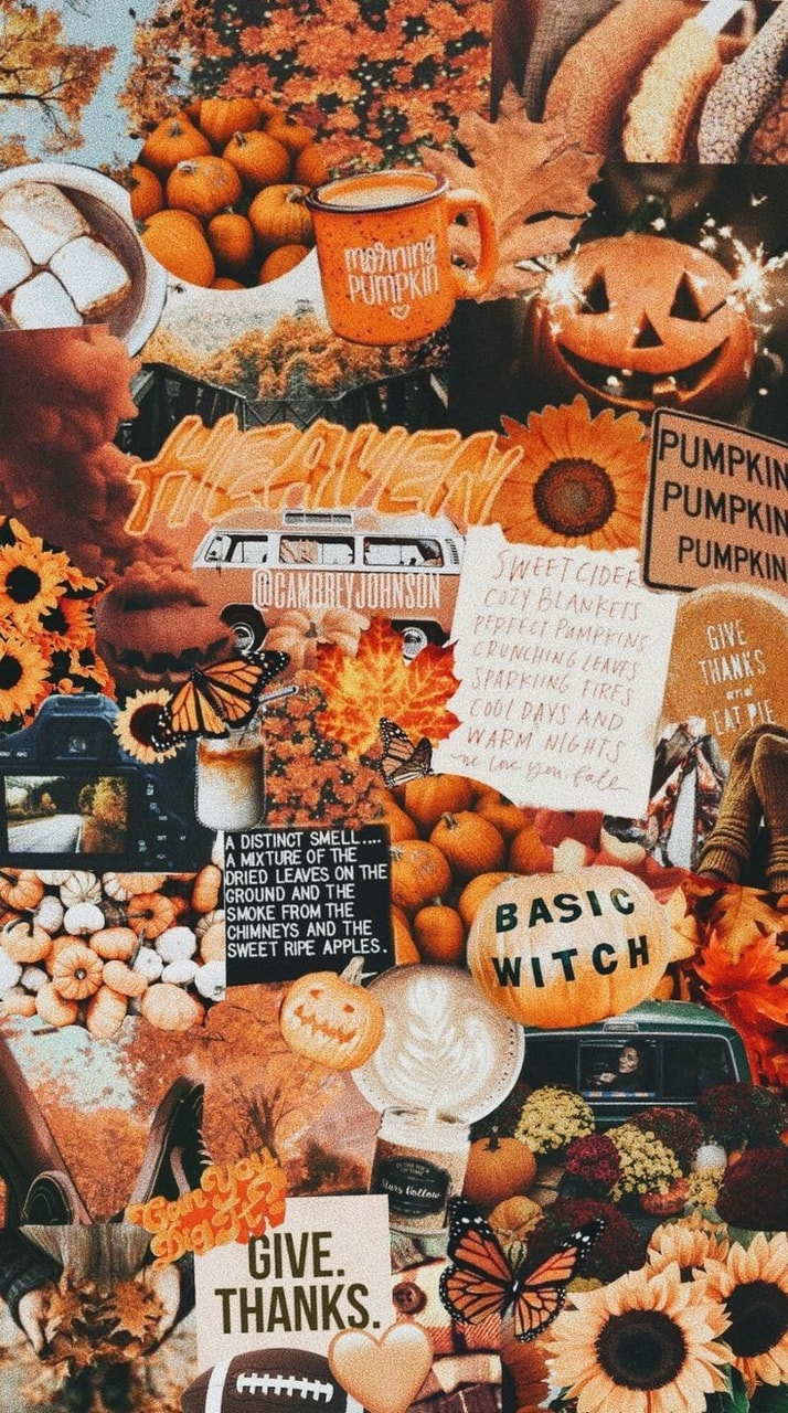 Autumn Pumpkin Aesthetic And Wallpaper Image 6443025 On Favim Com