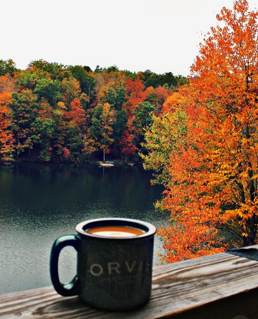 hot coffee, cold morning during fall, relax and vacation