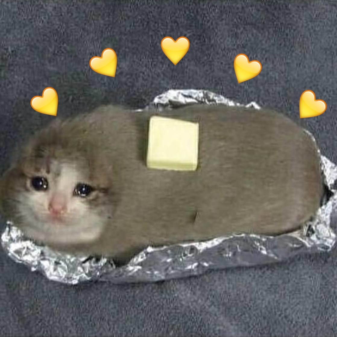 Sadboi Cat Kttens Memes And Wholesome Memes Image 6460800 On