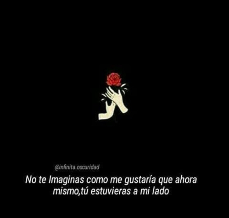 frases, cerca, amor imposible and tumblr