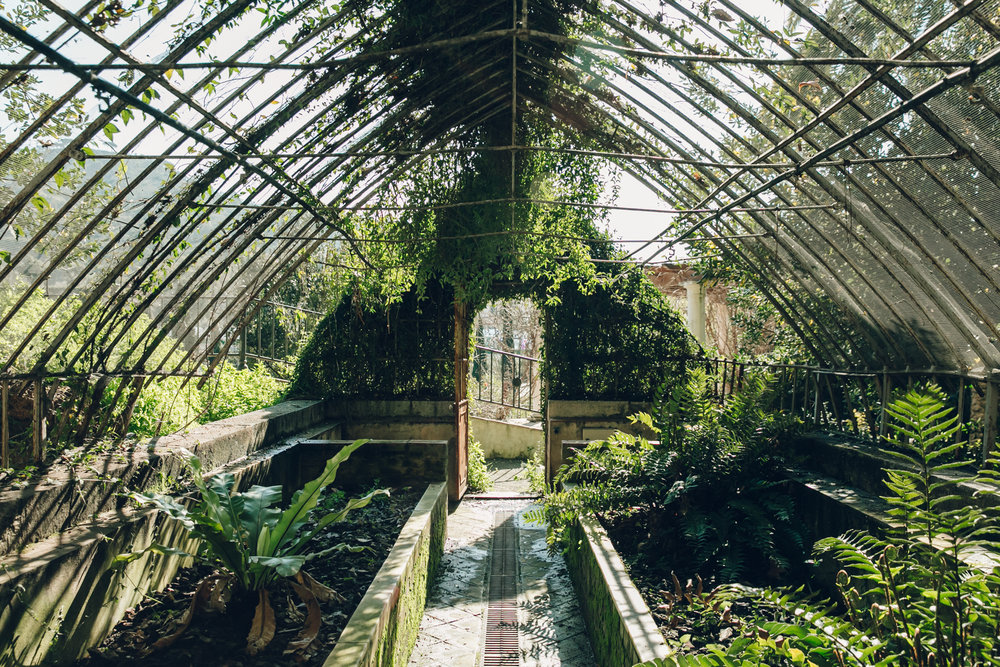 garden, plants, spain and green house