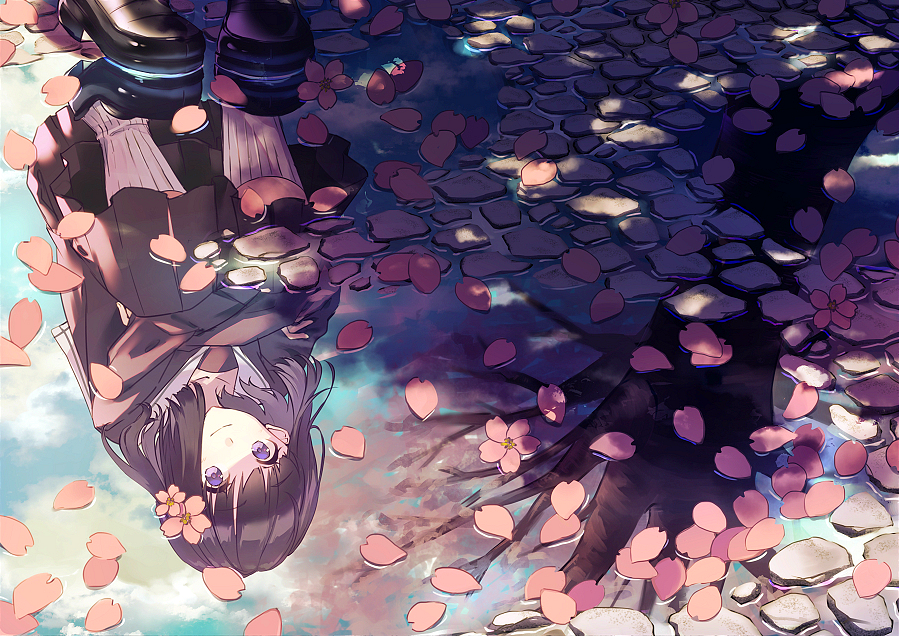 puddle, flowers and beautiful