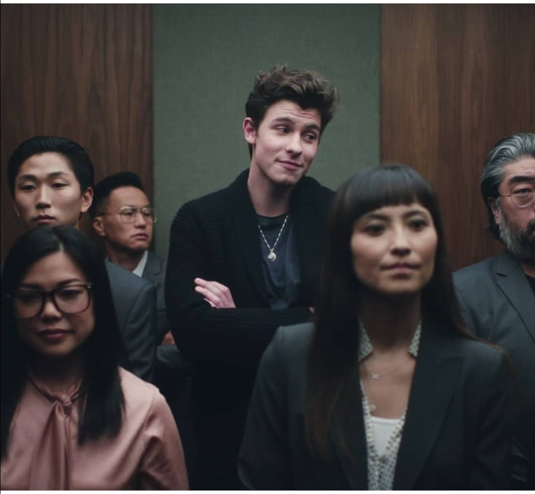 singer, lost in japan and shawn mendes