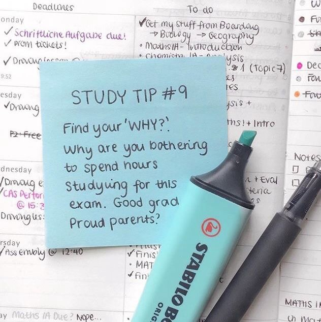 tips, homework, love and colorful