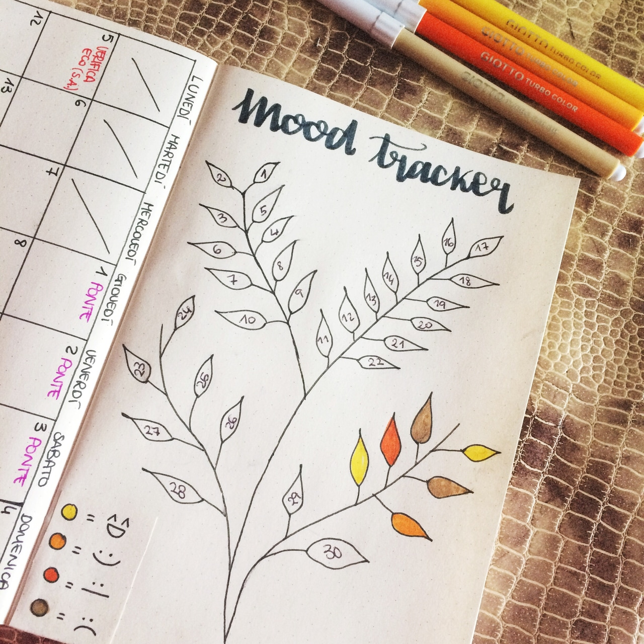 study, scuola, university and month planner
