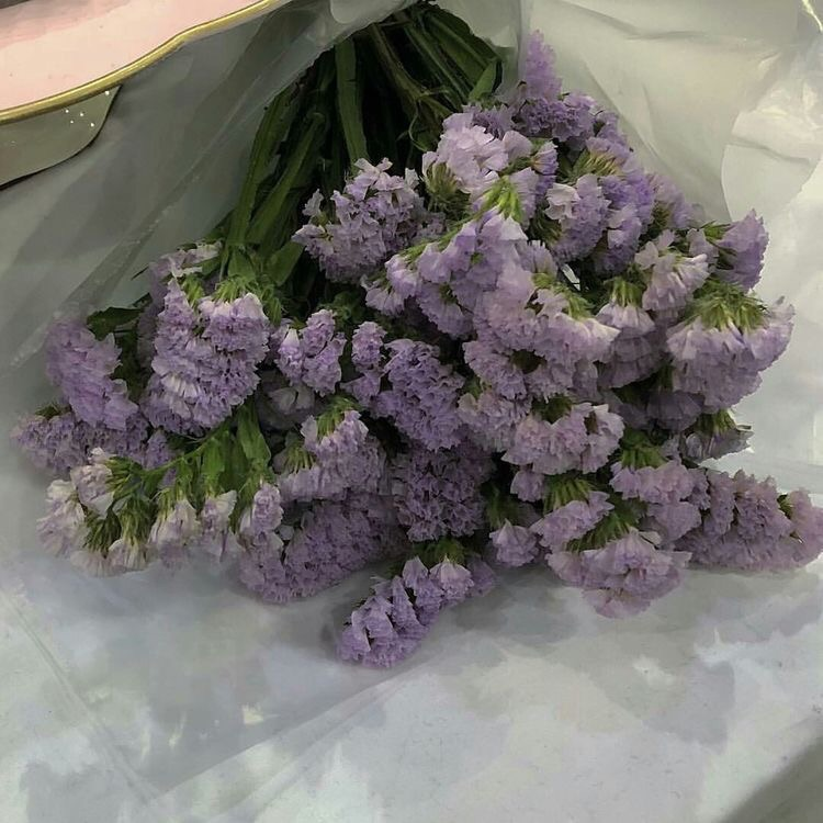 bouquet, aesthetic, violet and flowers