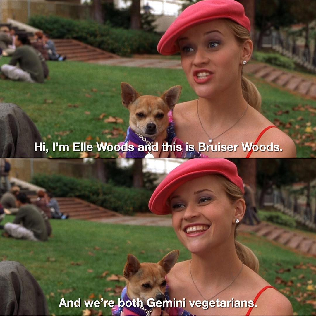 inspo, blonde, legally blonde and elle woods