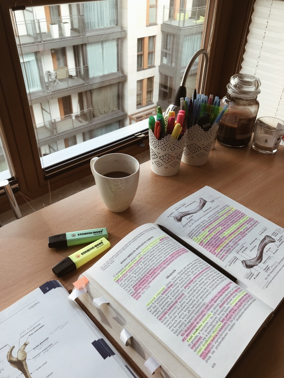 cozy rooms, stationary, studying motivation and study desk