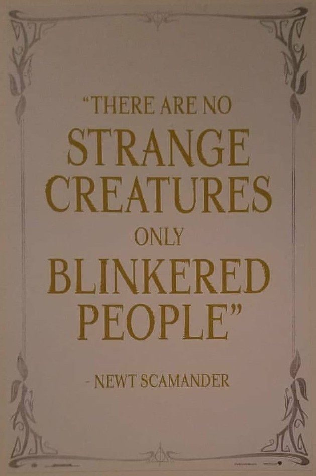 wizarding world, fantastic beasts, harry potter and quotes