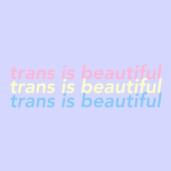 asexual, queer, transgender and gay