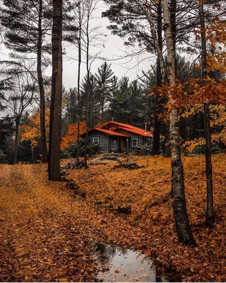 autumn, cabin, december and night
