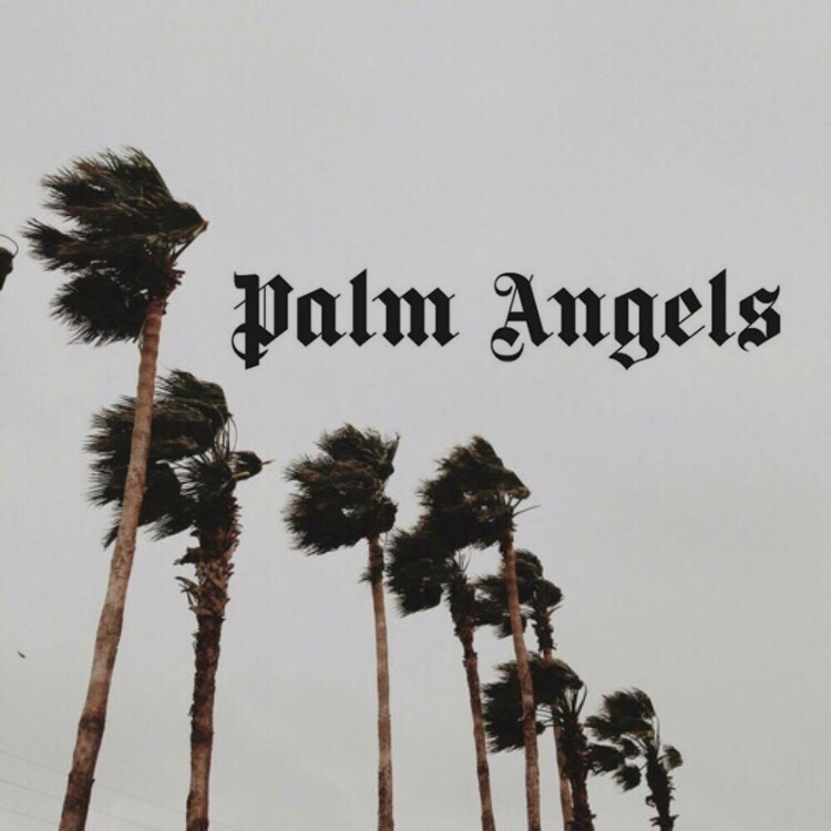 palm trees, palm angels and ghetto