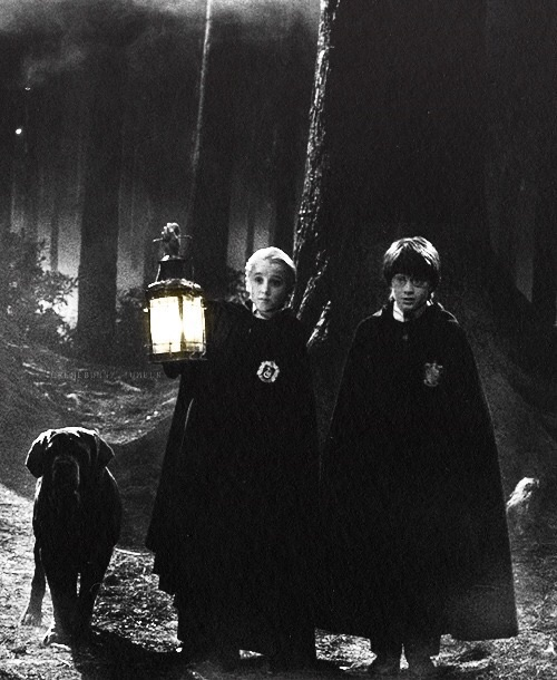 , malfoy, harry potter and dog