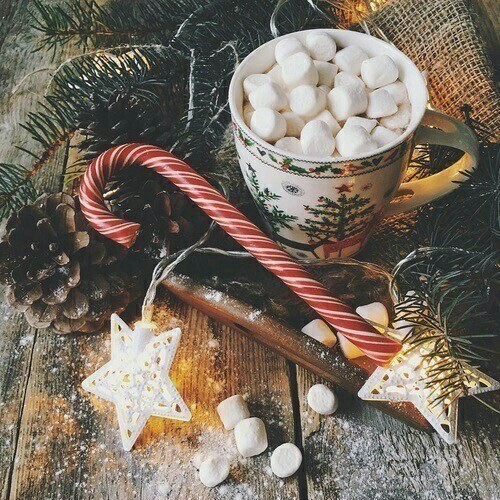 cozy, hot chocolate, happiness and merry christmas