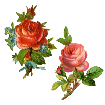 flores png, overlays, transparent and aesthetic png