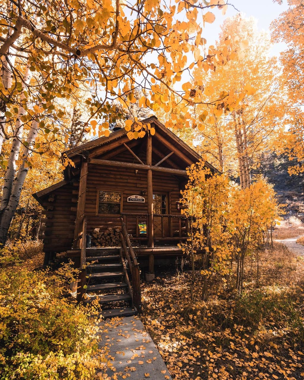 mountain living, mountains, home and log cabin