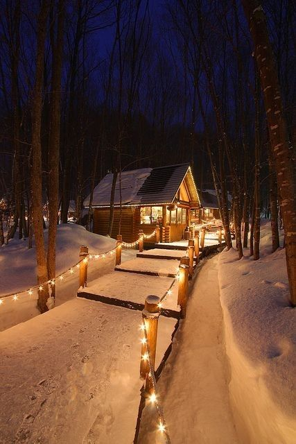 mountain living, cabin, forest and house