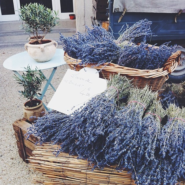 cottage life, dry herbs, lavender and witchery