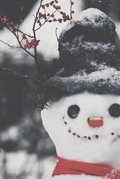 january, snowman, december and snowing