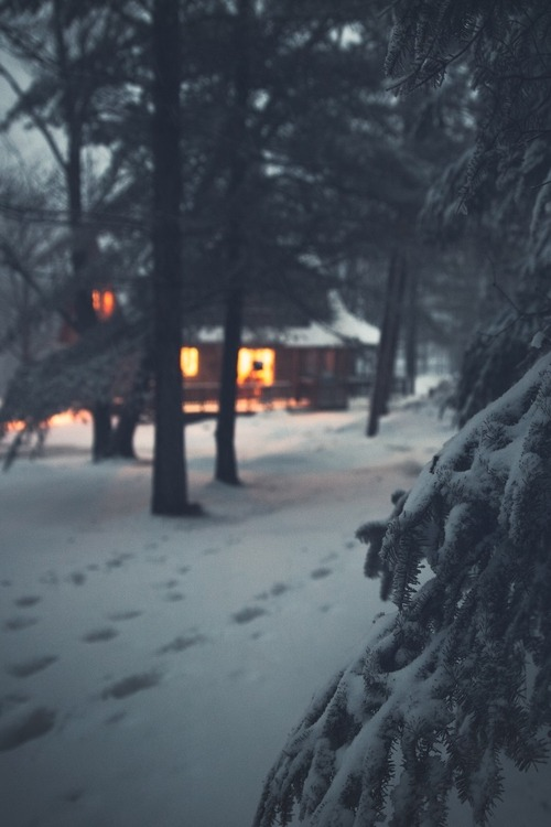 new year, home, snow and nature