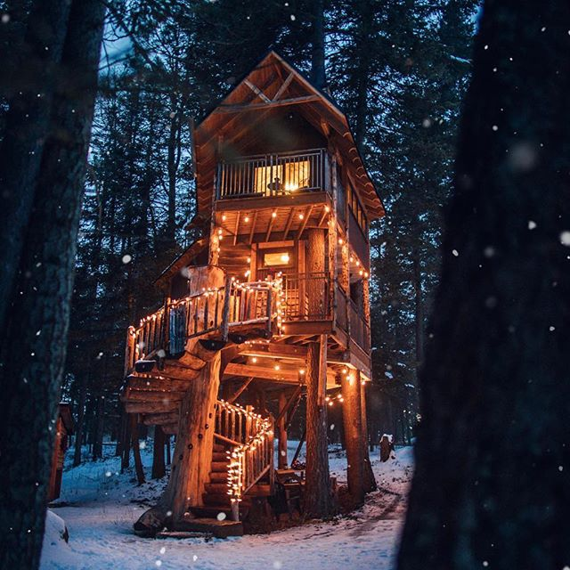 snow, snowy retreat, winter and christmas lights