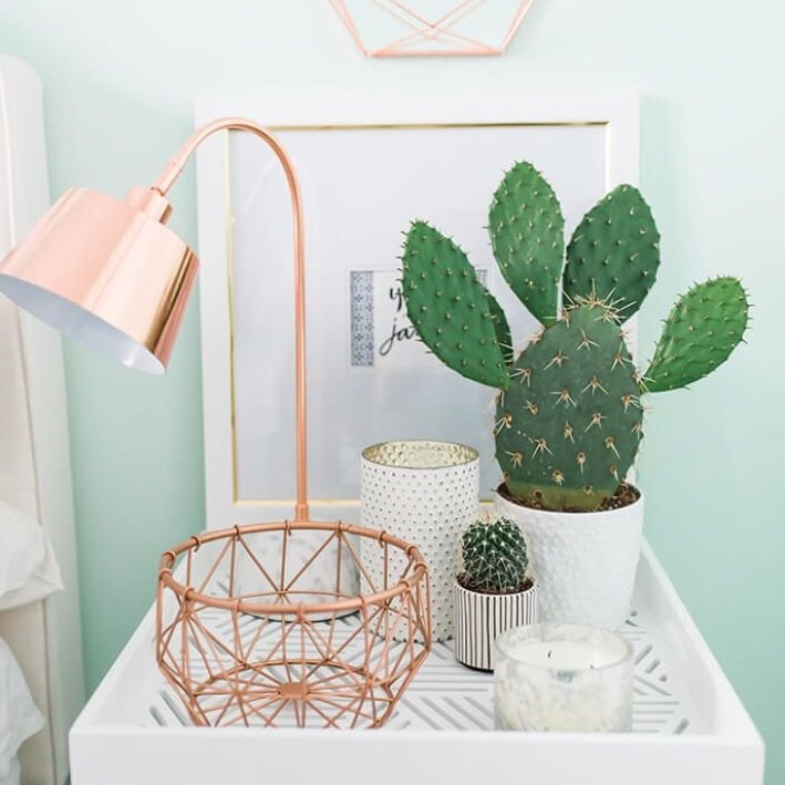 Aesthetic Cacti Pretty And Bedroom Image 6875770 On Favim Com
