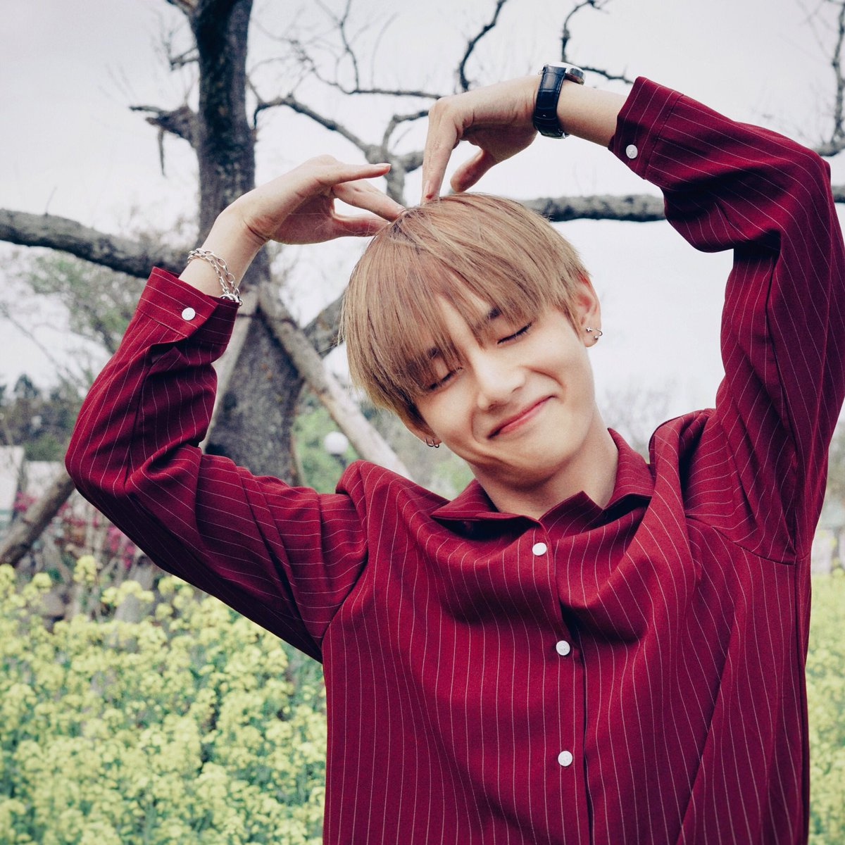 bts army, bts tae, boys and aesthetic